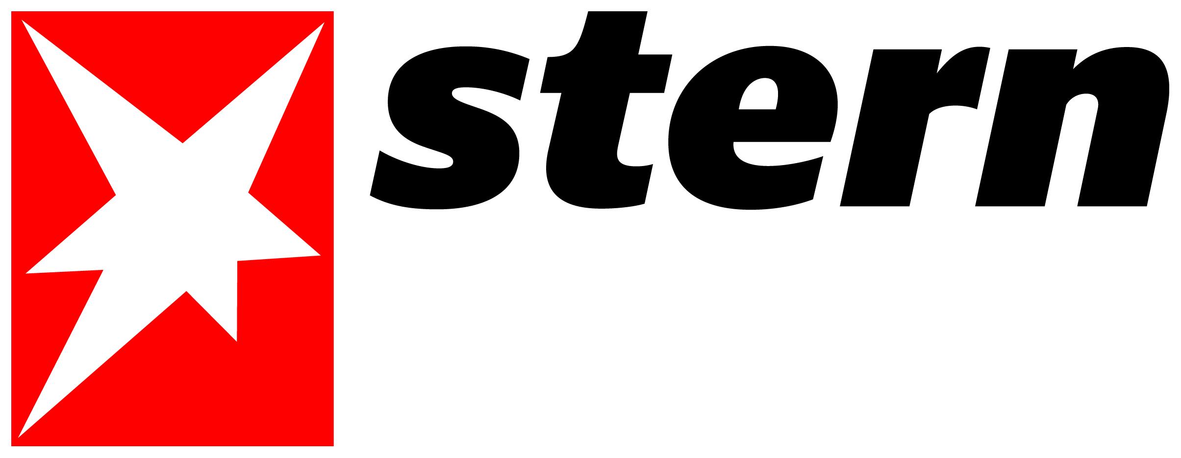 Stern Logo 2013